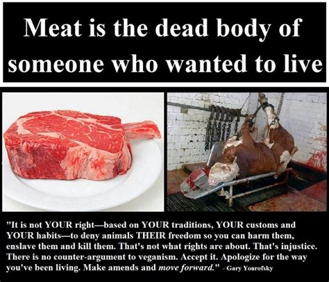 Meat Memes - gary yourofsky vegan meat animals vegan meme