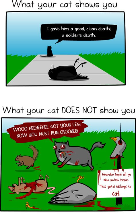 Much Information Can Kill by How Much Do Cats Actually Kill Infographic The Oatmeal