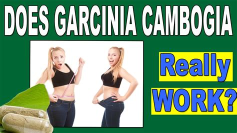 does garcinia cambogia really work for weight loss or is