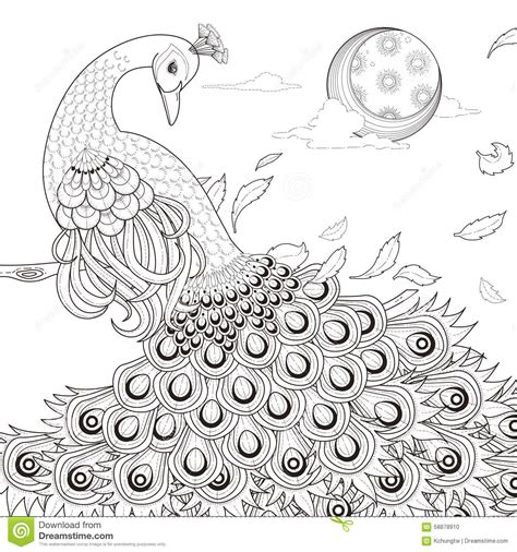 define doodle book graceful peacock coloring page stock vector image 58878910