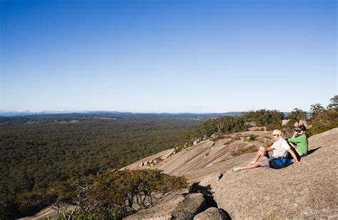 bald rock national park nsw national parks