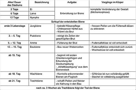 Lebenslauf Vorlage Tabellenform Traditioneller Lebenslauf Lebenslauf Mit Gelber Linie Lebenslauf Word Die Lebenslauf Vorlage