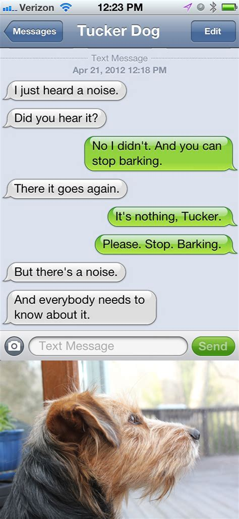 from pets text from tucker hears a noise with dogs and cats