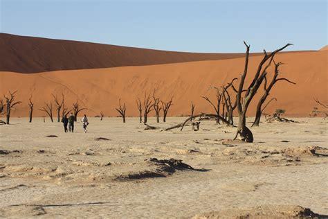 turisti per caso namibia dead vlei viaggi vacanze e turismo turisti per caso