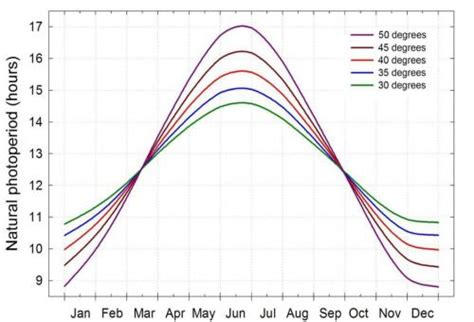 Daily Light Low Daily Light Integrals In Northern Latitudes Msu