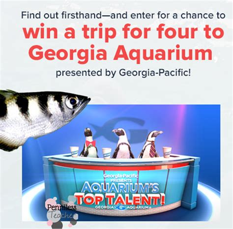Georgia Aquarium Gift Card - georgia aquarium giveaway from georgiapacific x 10 31 14