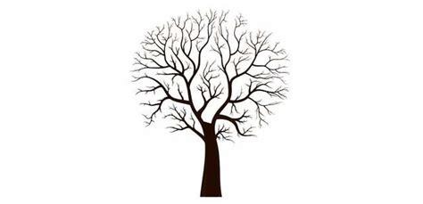 imagenes realistas de un arbol arbol de la vida sin hojas dibujo buscar con google