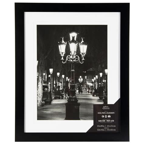 10 X 15 Matted Frames - 1 opening 12 in x 16 in matted picture frame