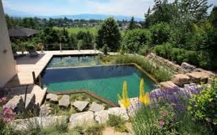 schwimmteich im garten schwimmteich im garten so bauen sie ein biotop zum bahnen