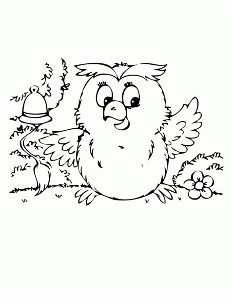 cute baby owl coloring page h m coloring pages