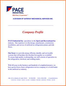 Construction Company Introduction Letter Sle Pdf 3 Construction Company Profile Sle Pdf Company Letterhead