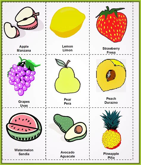 imagenes en ingles frutas en ingles related keywords suggestions frutas
