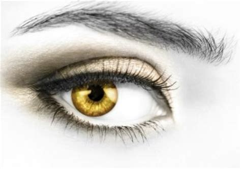 gold eye color catma new fanged bovice solia