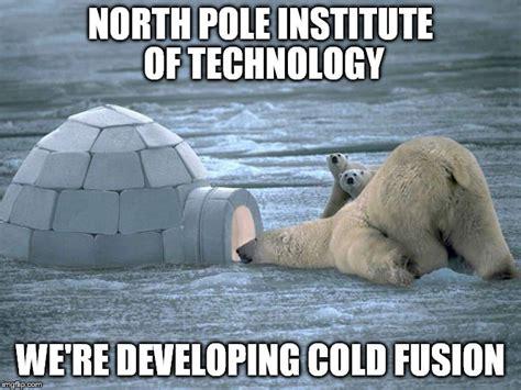 Polar Bear Coke Meme - polar bear igloo imgflip
