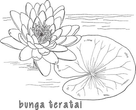 lukisan tato kartun 28 gambar sketsa sepatu hitam putih sketsa bunga hitam