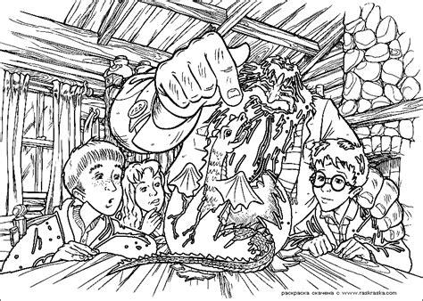 harry potter coloring book for adults grown ups раскраска хагрид и дракон раскраски из фильма про гарри