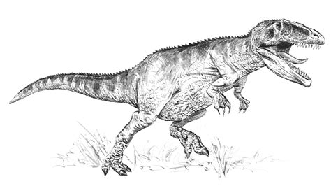 giganotosaurus coloring pages search results fun