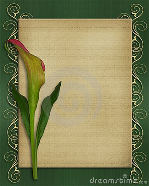calla lily invitation card template stock photography