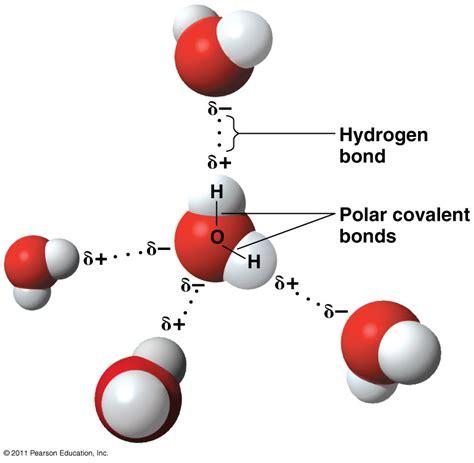 diagram of water molecule assalamualaikum