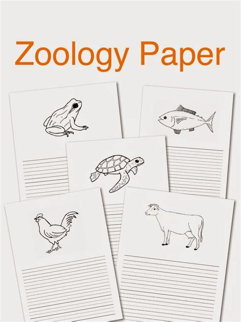 printable zoology worksheets 67 best images about montessori zoolog 237 a on pinterest
