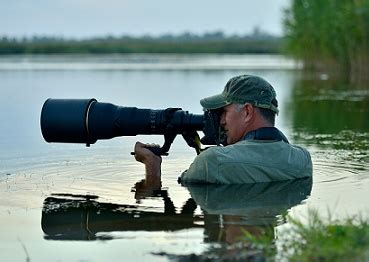 Educational Requirements For Photography by How To Become A Wildlife Photographer Theartcareerproject