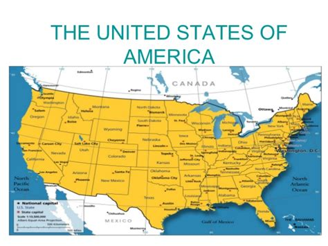American United States Of America The United States Of America