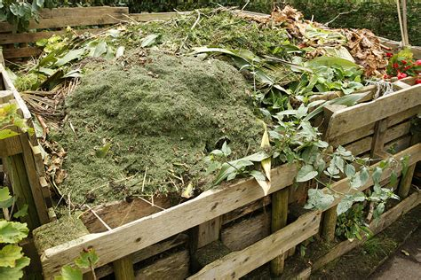 Making Compost Harvest To Table Compost For Vegetable Garden
