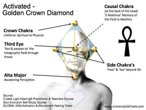 7 crowns in the soul 2 awakening one at atime books article 1 awakening your pineal gland universal tools