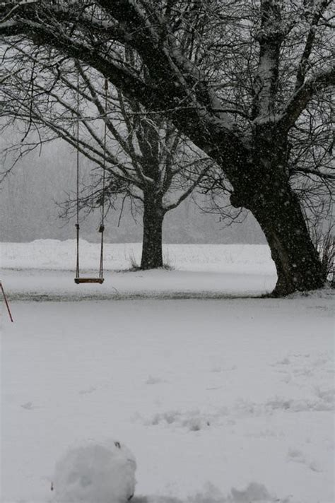 winter swing winter snow and tree swing winter wonderland pinterest