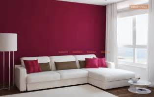 Bedroom Paint Color Combinations - hall colour combinations photos image of home design