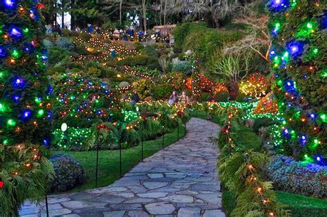 butchart gardens lights tour butchart gardens light tour garden ftempo