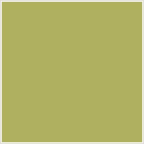 color olive aeb05d hex color rgb 174 176 93 olive green