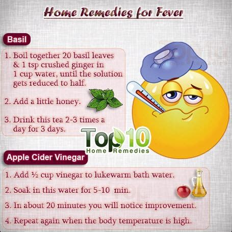 home remedies for fever top 10 home remedies