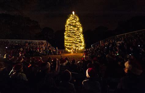 christmas tree lighting installed photos