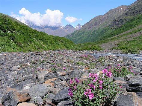alaska travelgram podcast alaska alpine adventures akonthego and airfare deals ak on the go