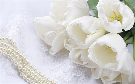 imagenes de flores blancas hermosas fotos de flores blancas fotografias y fotos para imprimir