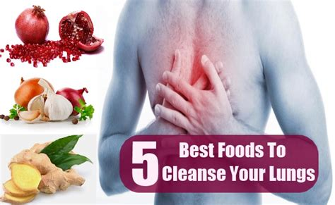 Best Way To Detox Lungs by 5 Best Foods To Cleanse Your Lungs Search Home Remedy