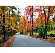 New England Fall Foliage Road Trips  Travel Channel