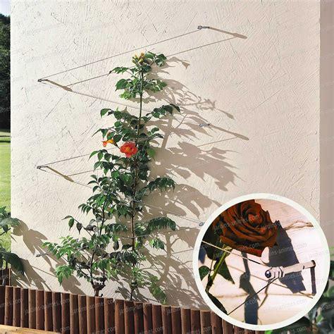 Attache Plante Grimpante by Cable Palissage 10m Treillages Support Grimpantes