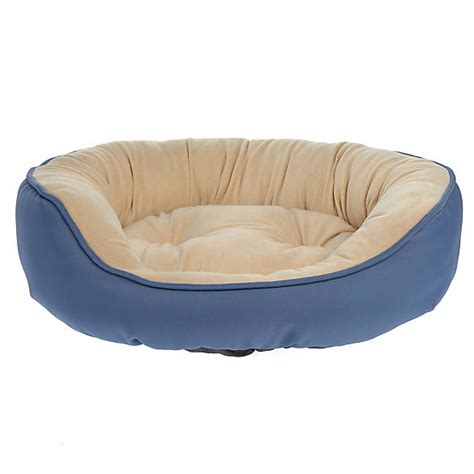 petsmart beds top paw 174 cuddler pet bed dog cuddler beds petsmart