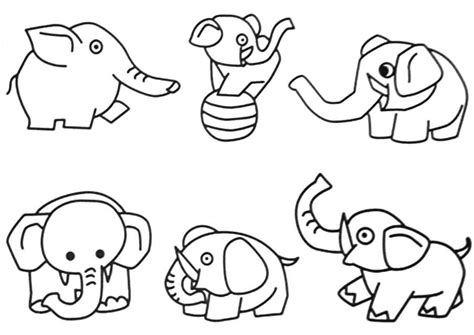 pictures of jungle animals coloring home