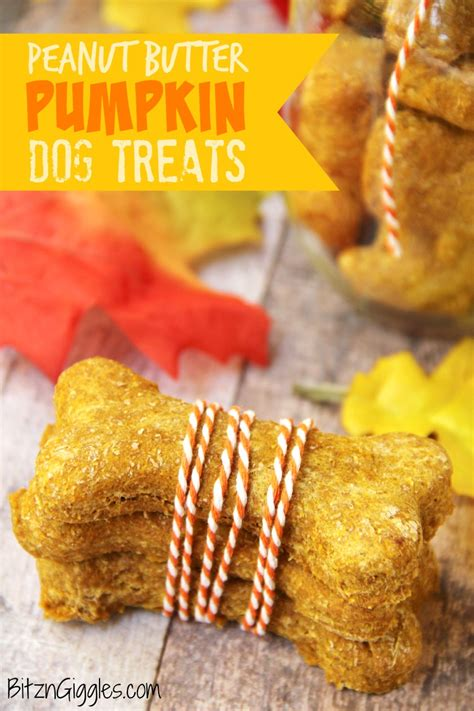 peanut butter treat recipes peanut butter and pumpkin treats