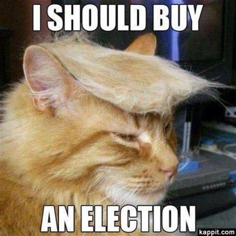 I Should Buy Meme - i should buy an election
