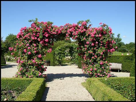 Britzer Garten Restauration by Britzer Garten