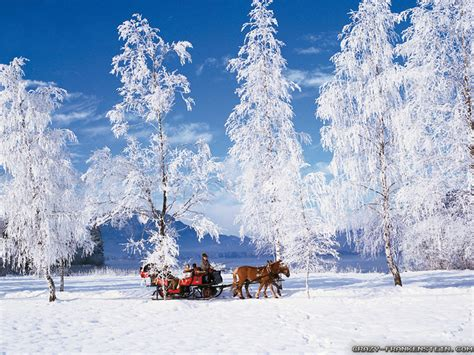 computer wallpaper snow scene winter scenes wallpapers jpg 1024 215 768 winter scenes