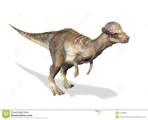 Poster Seventeen Dino 2 Unofficial Ready Stock Request Poster Chat 3 d rendering of a pachycephalosaurus stock illustration image 22729839