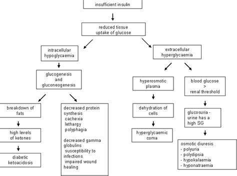 how to make a pathophysiology diagram ideal cure diabetes