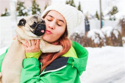 best emotional support breeds 11 best emotional support breeds for anxiety insider monkey