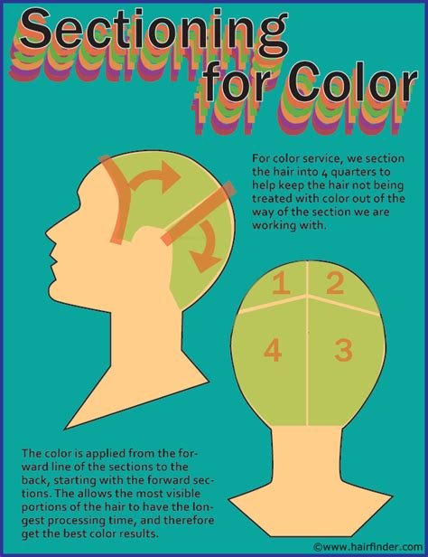 how to section hair how to section hair or divide the hair when coloring