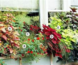 10 easy beautiful window boxes for sun